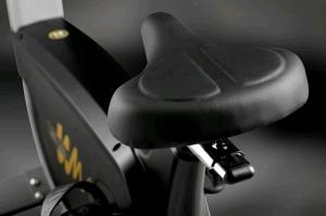 Велотренажер Wega S300 Hasttings