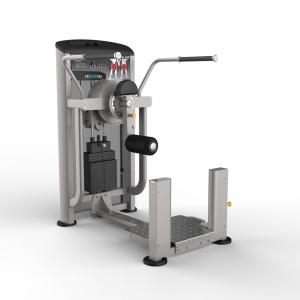 Мультитренажер для бедер и ягодичных мышц IE9509 Aerofit