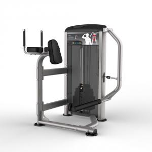 Силовые тренажеры Ягодичные мышцы IE9526 Aerofit