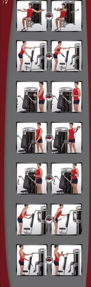 Иллюстрированные инструкции выполнения упражнений
