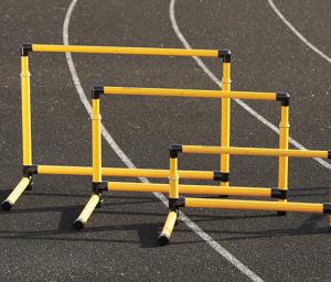Набор барьеров 6шт 15,5см 3118 Perform Better