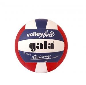 Мяч волейбольный, р.5 GALA Training 500 Gala